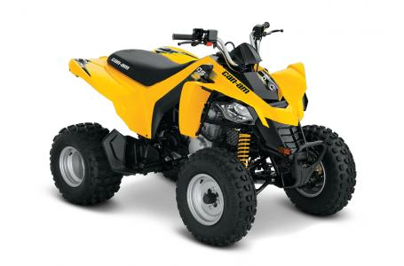 $3,499, 2016 Can-Am DS 250